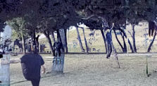 VID_20210116_162353_163014_KDENLIVE by dabnotu_videos